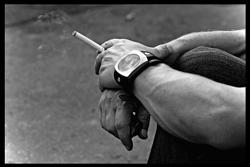 Rökare i Sverige